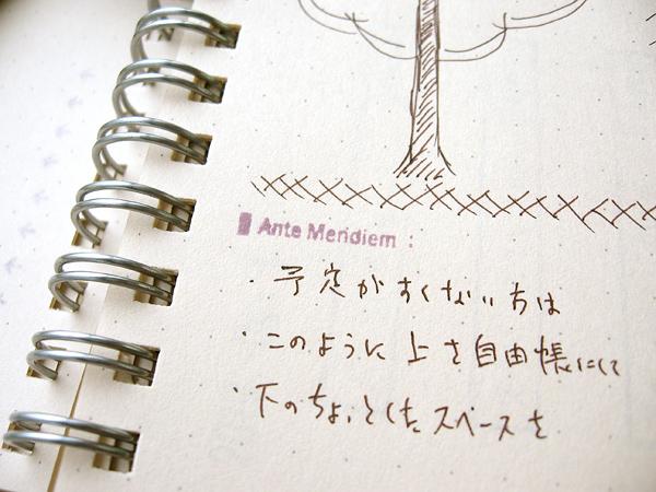 http://store.qol-web.jp/images/102730-05.jpg